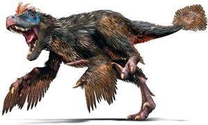 Perche i dinosauri avevano le piume-300x180