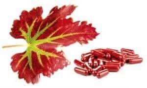 estratto di vite rossa-300x180