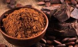 Cacao4-800x400