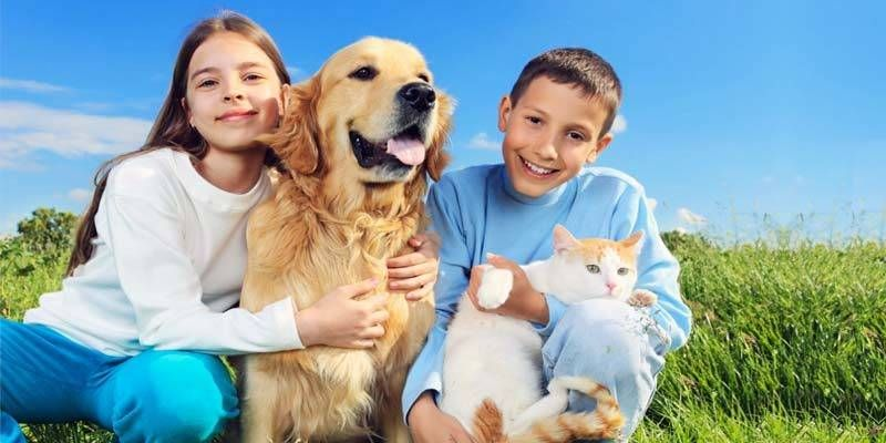 le infezioni potrebbero essere trasmesse dal cane alluomo