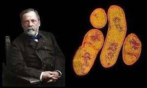 La scoperta di microrganismi che causano malattie-300x180