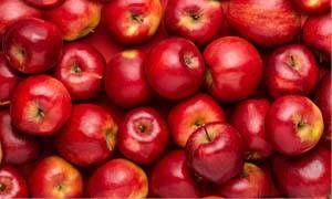 Quando i frutti fermentano-300x180