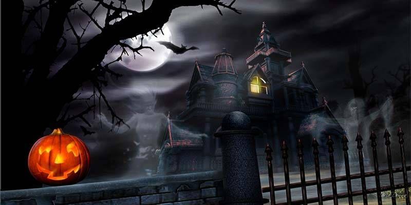 Halloween1-800x400