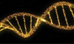 Il DNA e il mistero della vita1-800x400