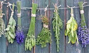 5 rimedi naturali per il riposo-300x180