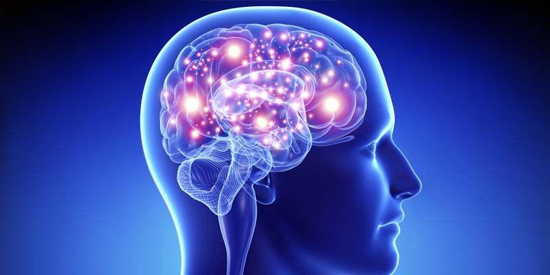 10 miti da sfatare sul cervello1-800x400