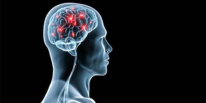 10 miti da sfatare sul cervello4-800x400
