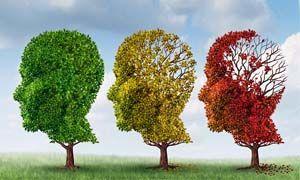 Morbo di Alzheimer-300x180