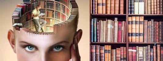 Leggere un romanzo1-800x400