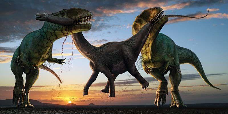Come erano veramente i dinosauri1-800x400
