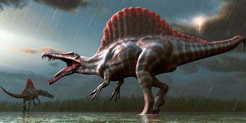 Come erano veramente i dinosauri2-800x400