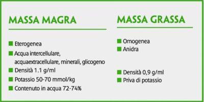 massa magra-800x400