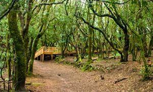 Consigli per un turismo ascetico-300x180
