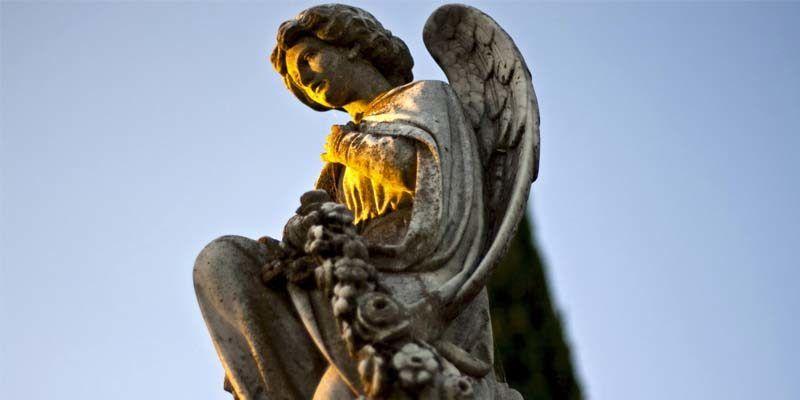 angeli custodi4-800x400