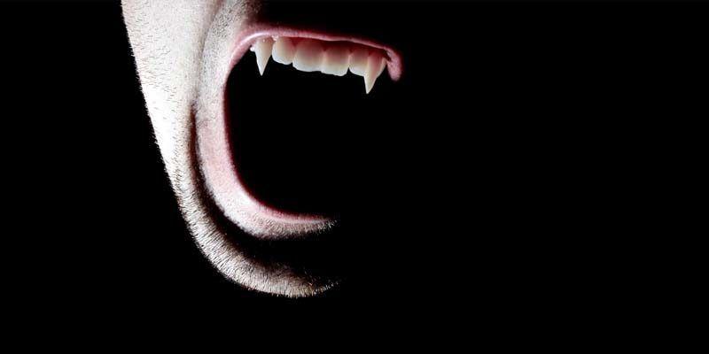 vampiri1-800x400