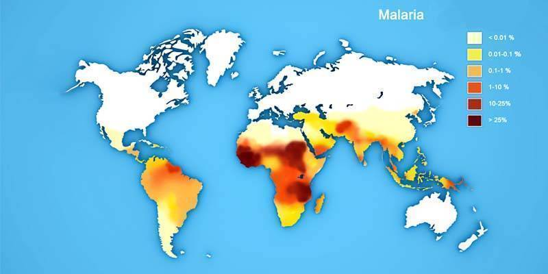 Malaria5-800x400