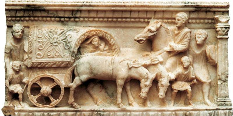 Uomini e cavalli2-800x400