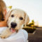 Come rendere felice il nostre cane1-800x400