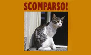 Scomparso-300x180