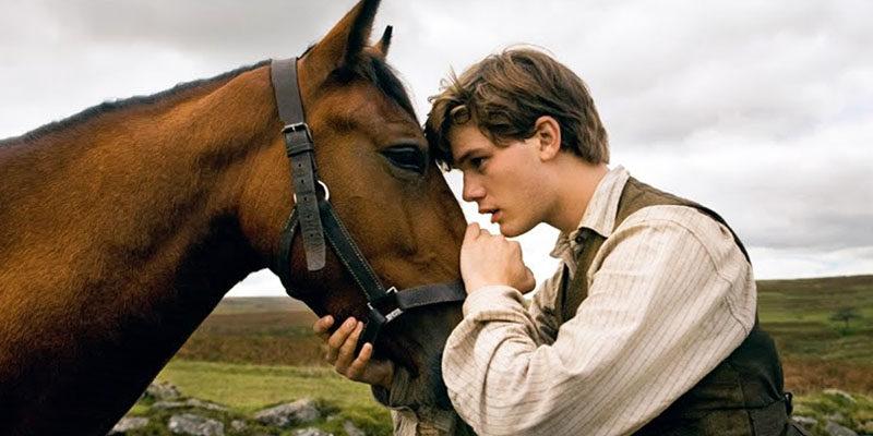 uomo-con-cavallo-1-800x400