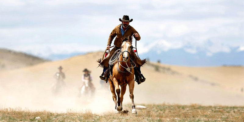 uomo-con-cavallo-7-800x400