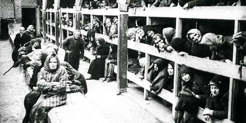 Caccia a 5 criminali nazisti2-800x400