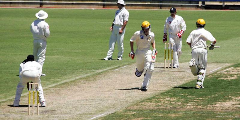 cricket-800x400