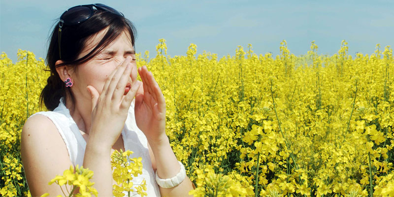 allergie-2-800x400