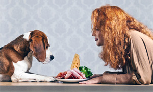 cani e gatti alimentazione-2-300x180