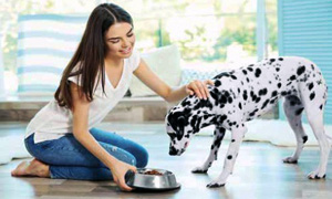 cani e gatti alimentazione-3-300x180