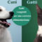 cani e gatti alimentazione-5-800x400