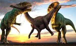 t-rex-3-300x180