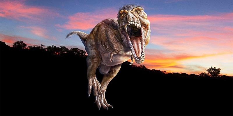 t-rex-3-800x400
