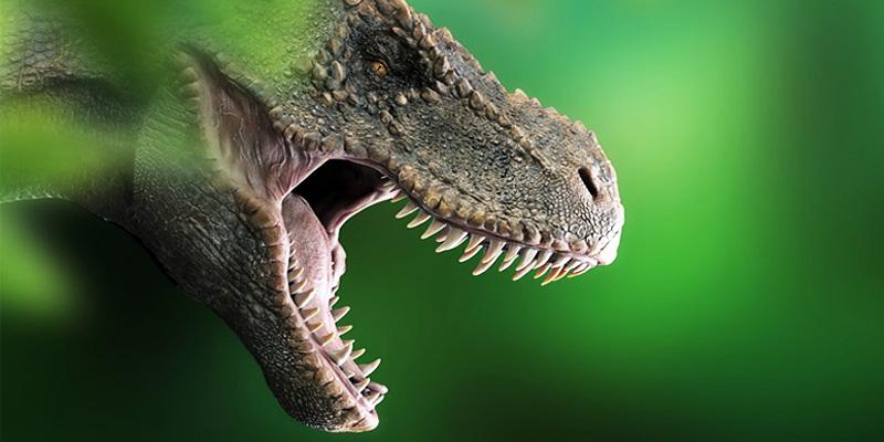 t-rex-5-800x400