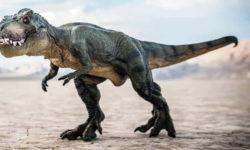 t-rex-8-800x400