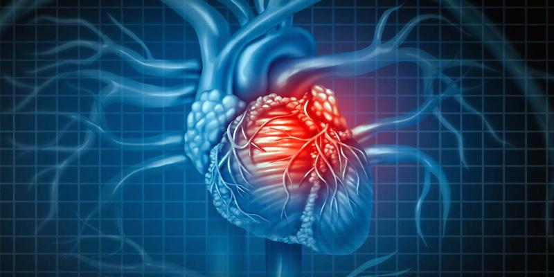 attacco-cuore-2-800x400