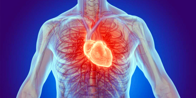 attacco-cuore-6-800x400
