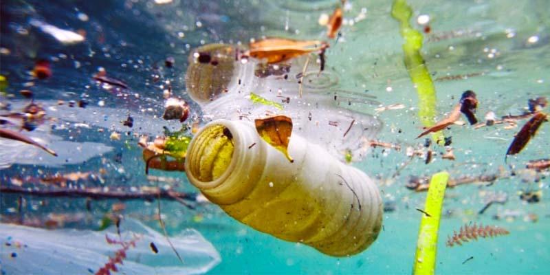 inquinamento-plastica-5-800x400