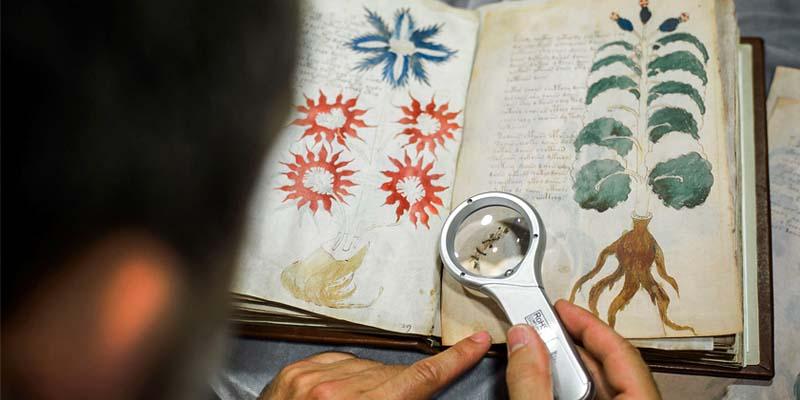manoscritto Voynich2-800x400