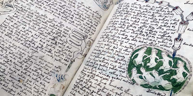 manoscritto Voynich5-800x400
