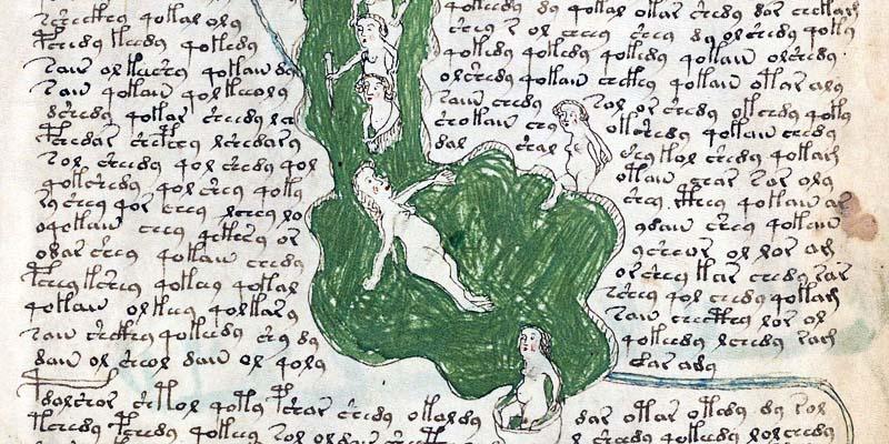 manoscritto Voynich6-800x400