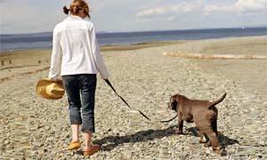 passeggiata-col-cane-4-300x180