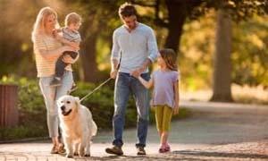 passeggiata-col-cane-5-300x180