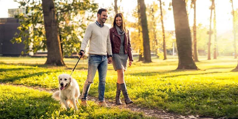 passeggiata-col-cane-7-800x400