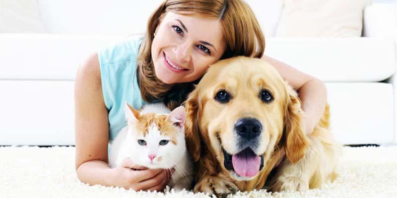 assicurazione cane gatto-10-800x400
