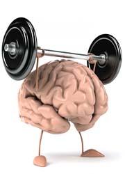 cervello-apprendimento-2-180x250