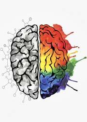 cervello-creattivita-4-180x250