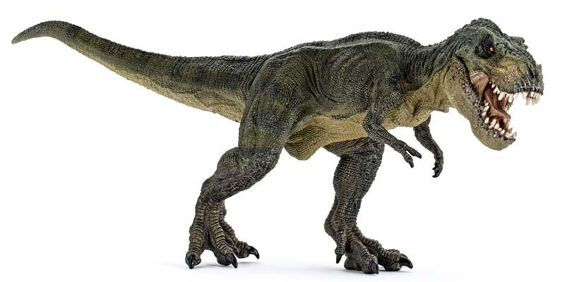 dinosauro-2-800x400