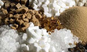 zucchero-300x180
