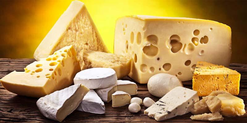 persone mangiano formaggi-2-800x400